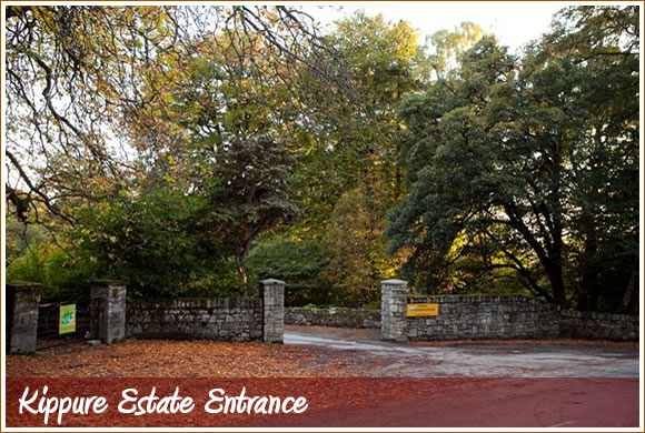 Kippure Estate Entrance